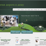 savepets home 150x150 Portfolio