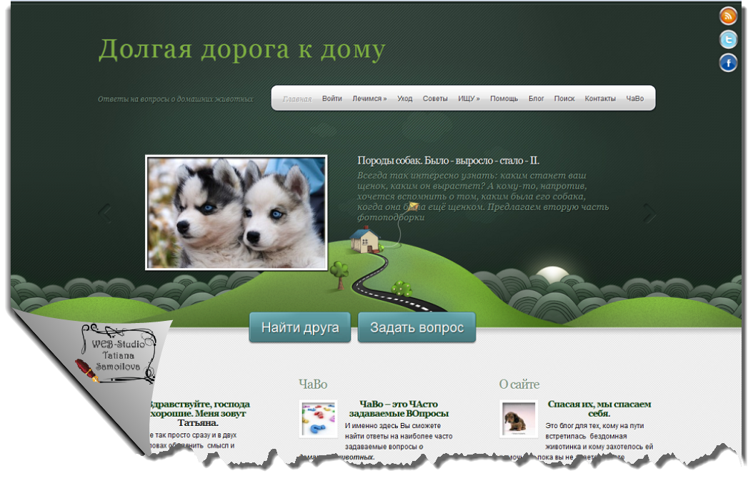 savepets home Portfolio